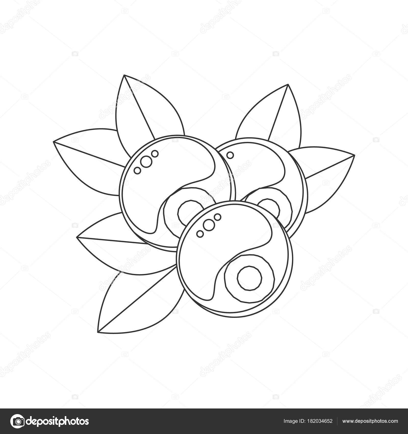 картинки голубика для детей раскраска для детей векторные