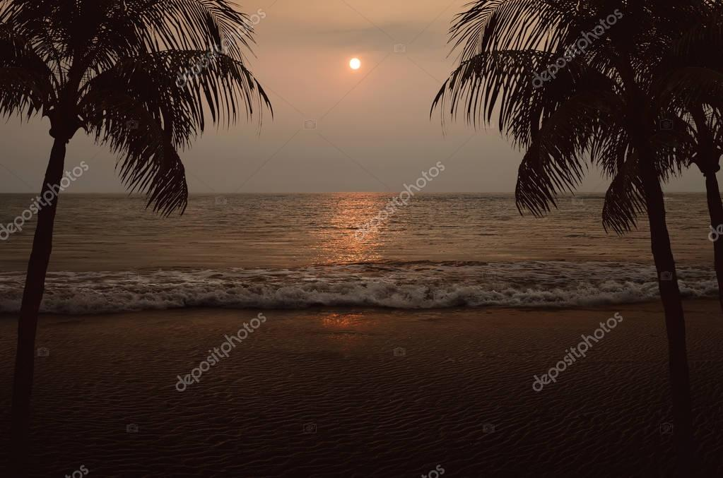 Beach with two palm trees and ocean view at sunset