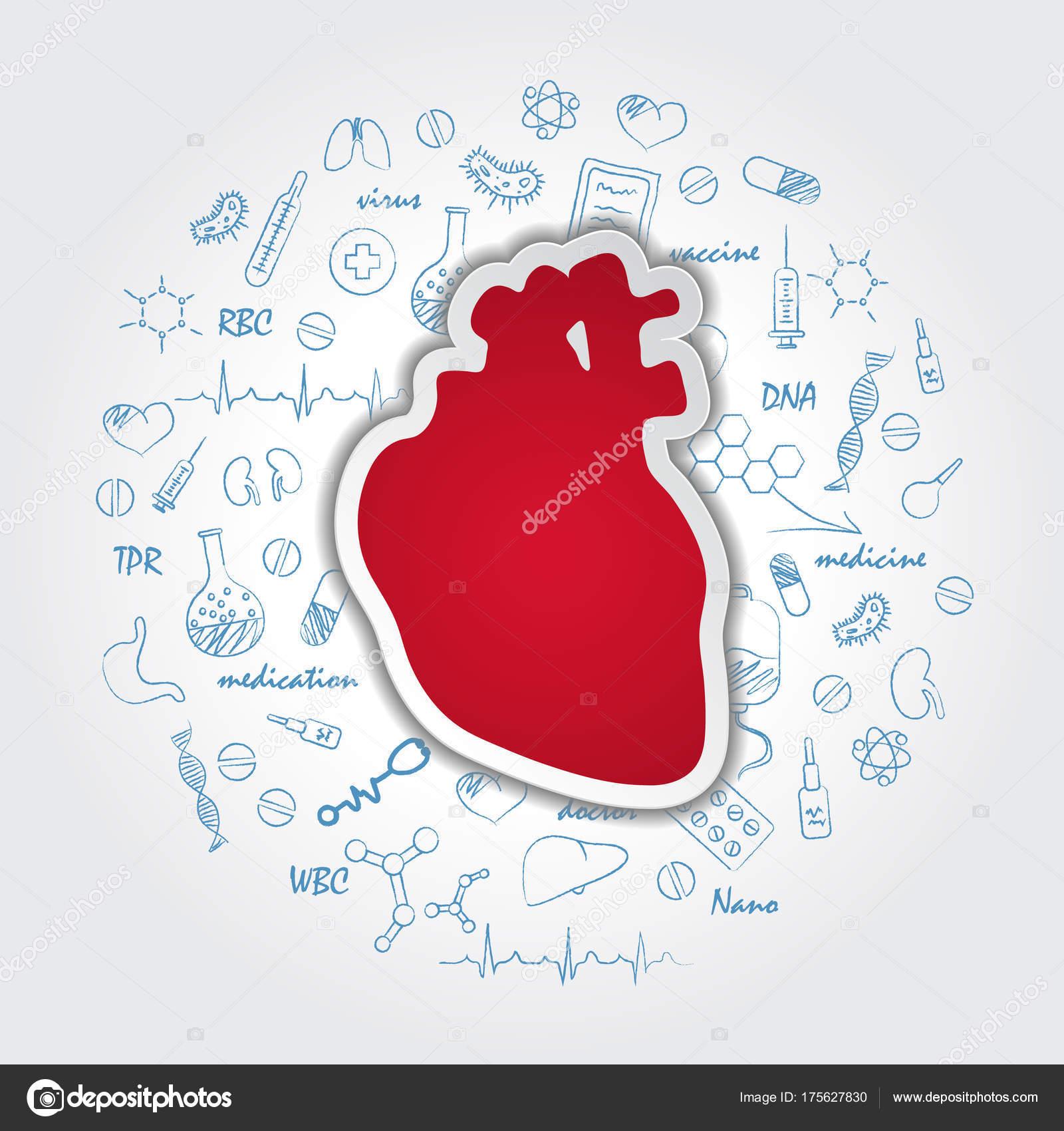 Fondo de atención médica creativa con anatomía del corazón humano ...