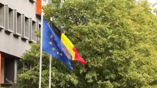 Die europäische Flagge und die deutsche Nationalflagge Deutschland mit Bäumen und Gebäude im Hintergrund, niederländischen und europäischen Flaggen