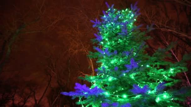 Vnější moderní dům nebo restaurace, vánoční světla svítí na stromech, v noční oblohu, pohyb kamery, strom zdobí vánoční světla, vysoký strom světla, pohled zespodu
