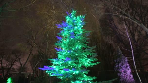 Kerstboom Lampjes Kerstboom Garland Op Een Nieuw Jaar Knipperende