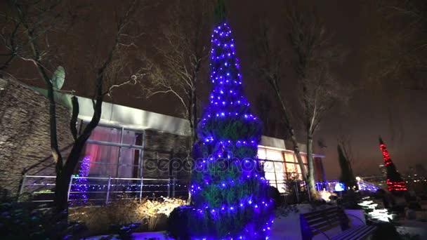 view modern house lights. Exterior Of Modern House Or Restaurant, The Christmas Lights Are Lit On Trees, View I