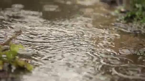 Gotas De Lluvia Caen Sobre La Pista El Movimiento De Enfoque
