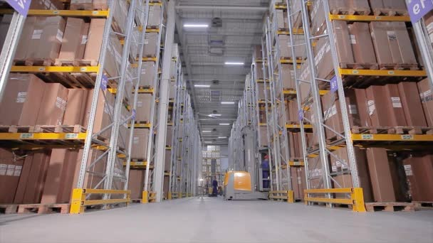 Workflow in warehouse, large machine in warehouse, modern forklift in warehouse