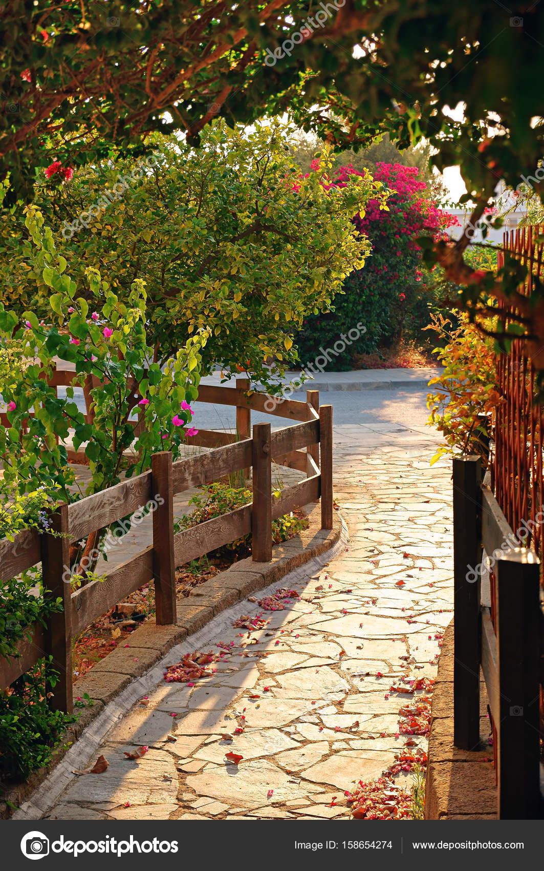 Cozy evening tropical garden path — Stock Photo © oleksandrberezko ...