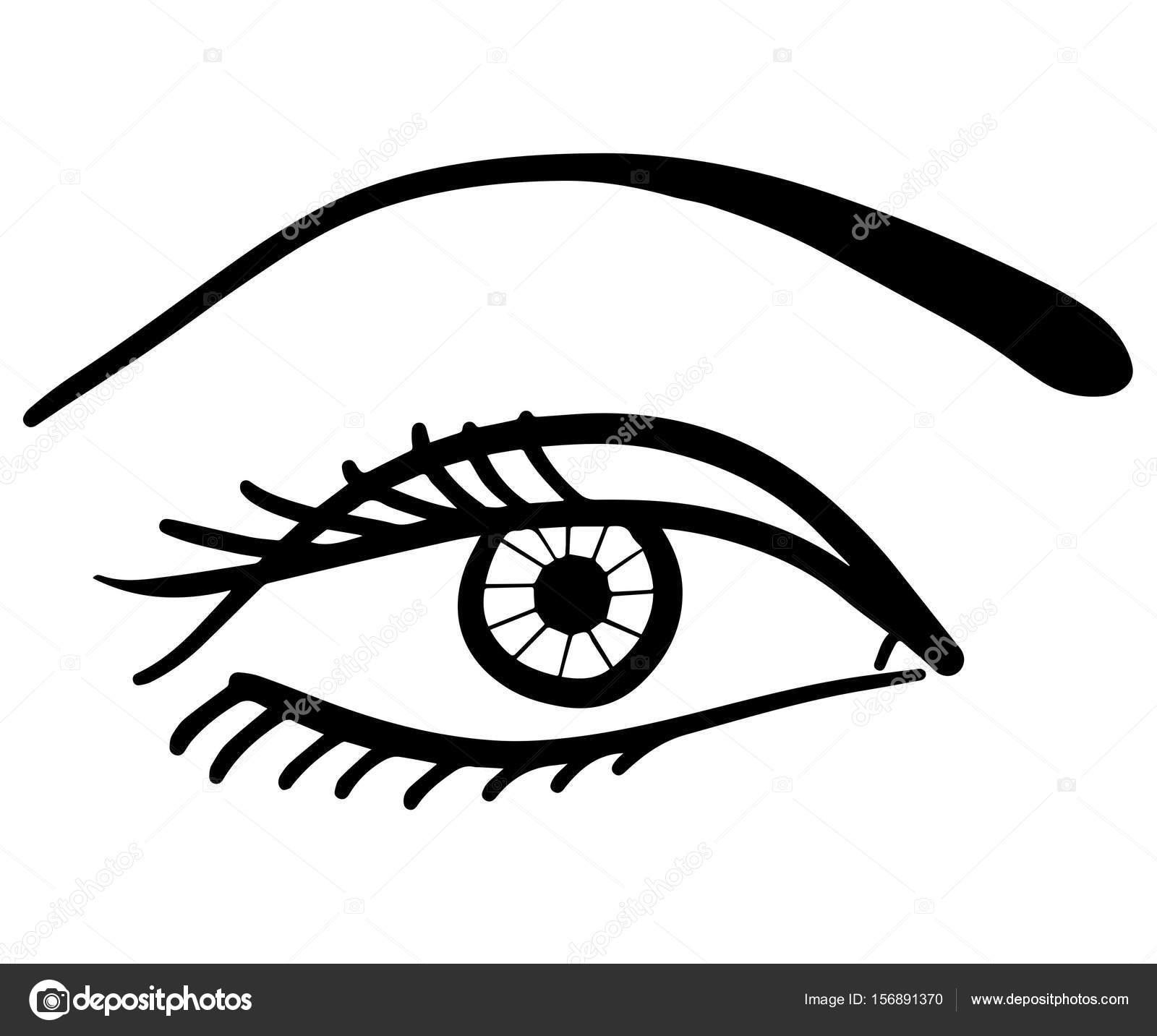 Profilé De Dessin D Un Oeil Photographie Asmart 156891370