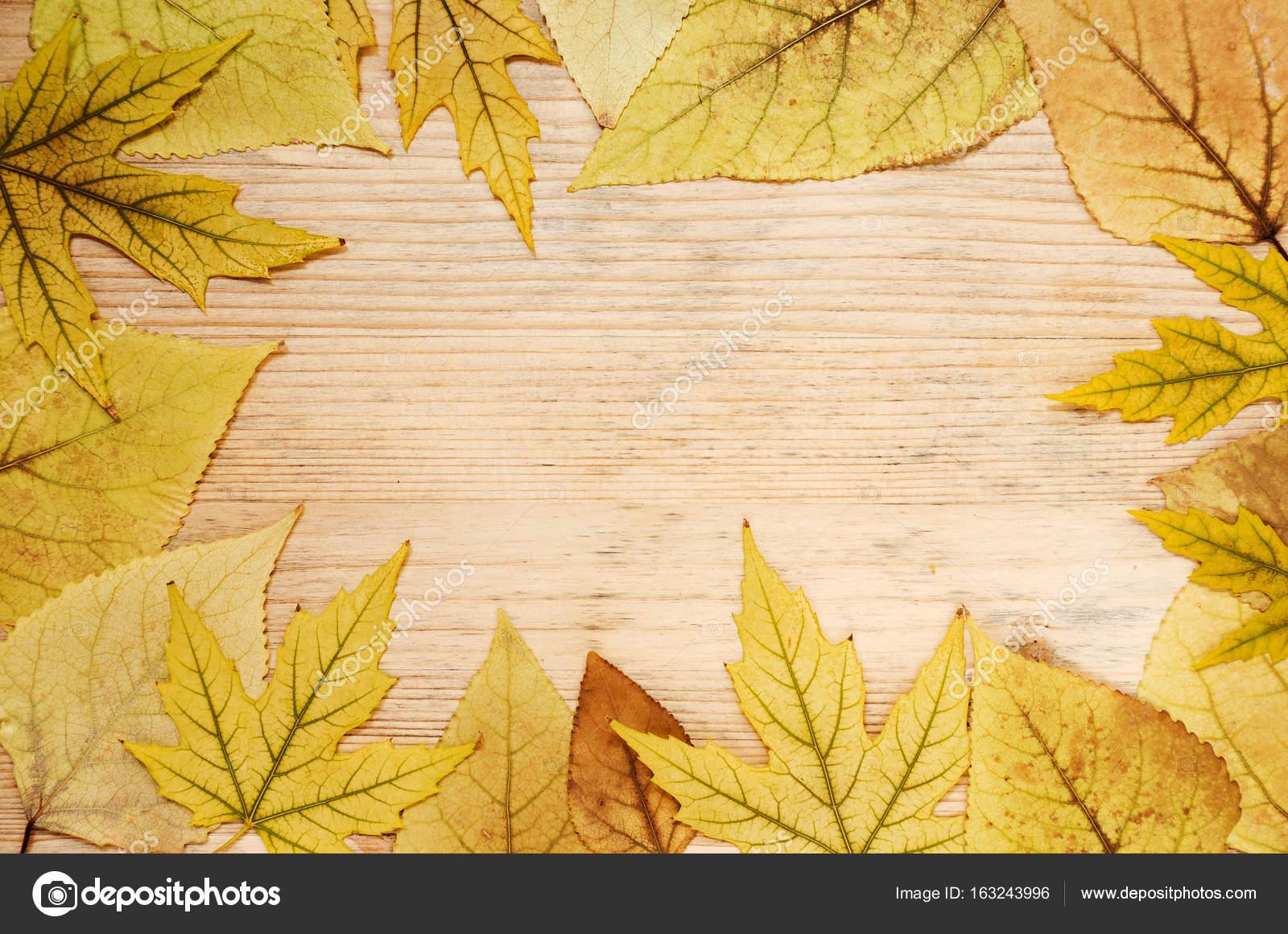 Marco de hojas de otoño amarillo sobre un fondo de madera. Tarjeta ...