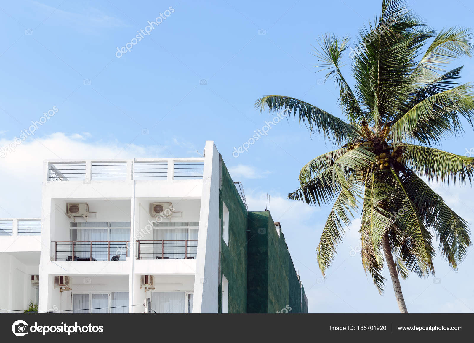 Terrace White Color In Hotel With A Palm Tree Against Blue