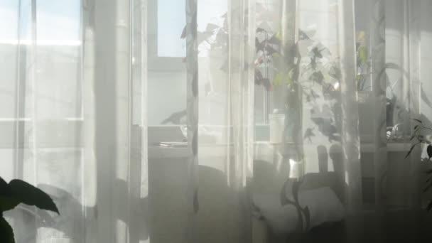 Slunce svítí skrz okno s lehkými závěsy