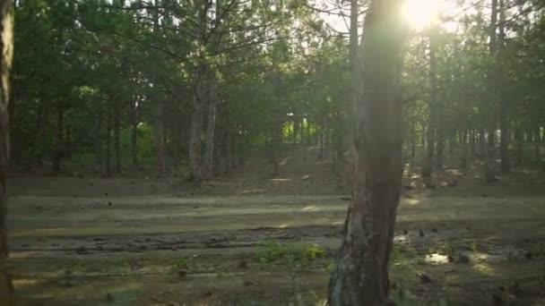 Ciclista corsa biciclette foresta piena di sole percorso Alba casco rapido rallentatore