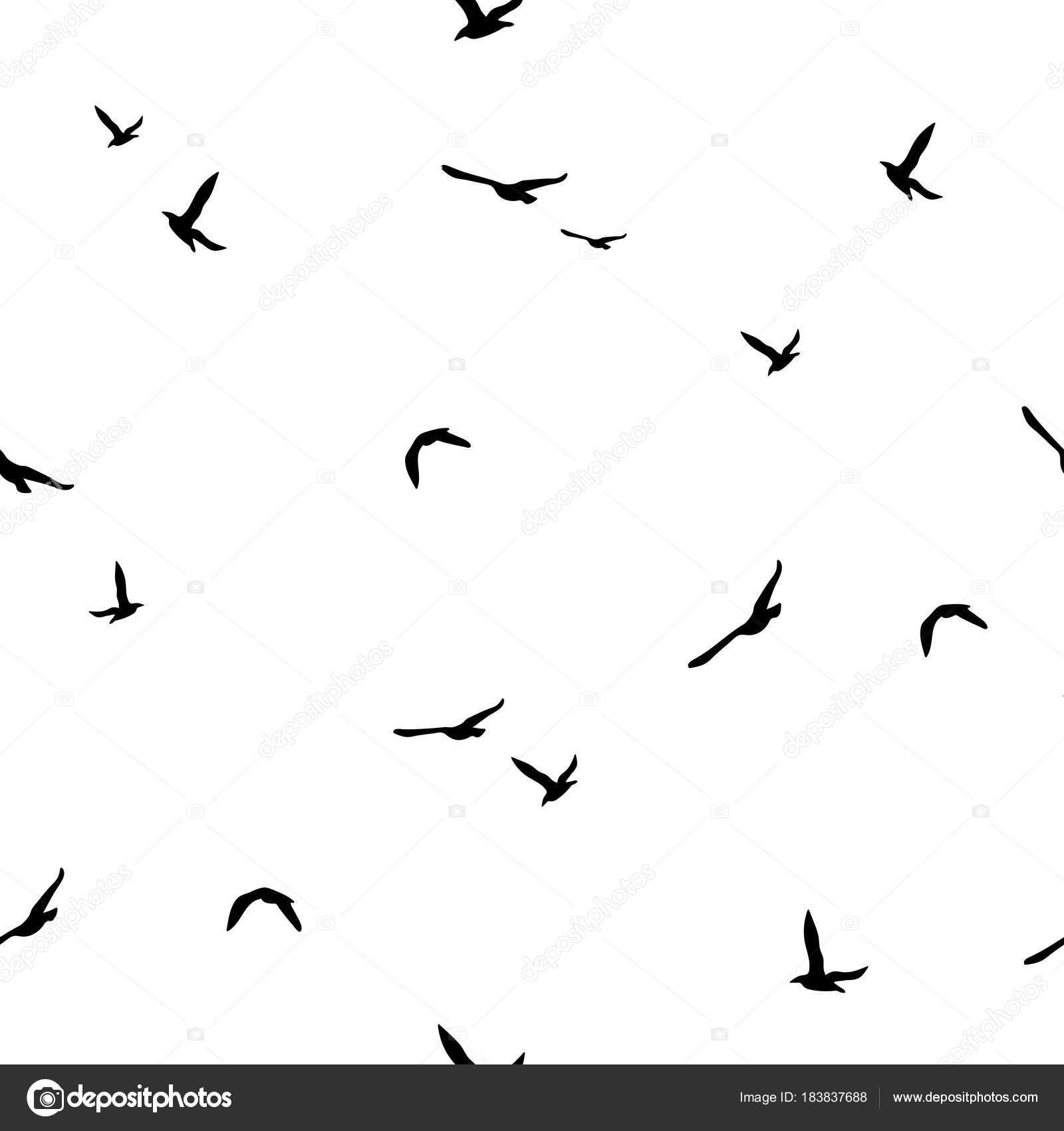 καλό μαύρο πουλί