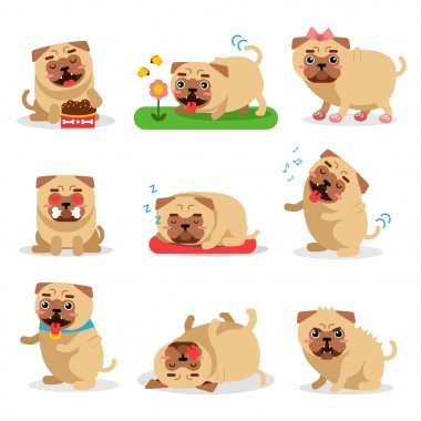 Cute pug dog activities during day set. Dog daily routine vector illustrations