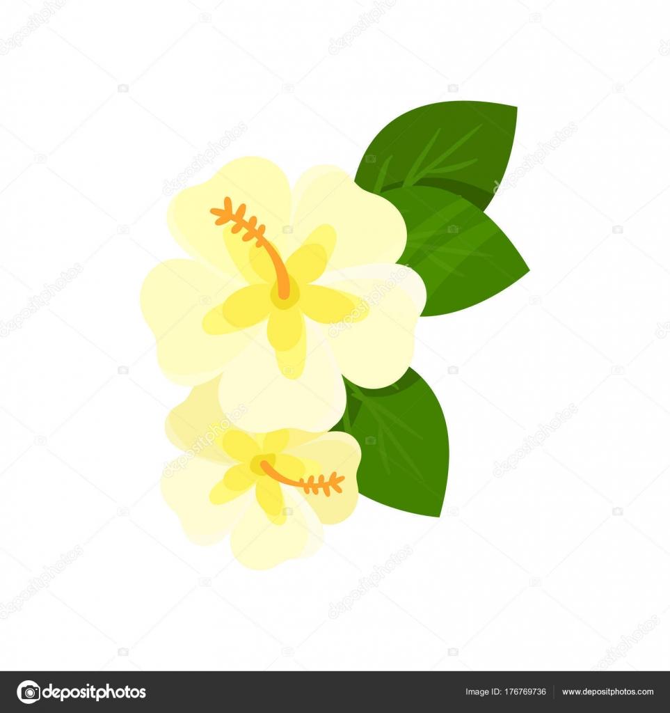 Dibujos Flores Tropicales Vector De Dibujos Animados De Flores