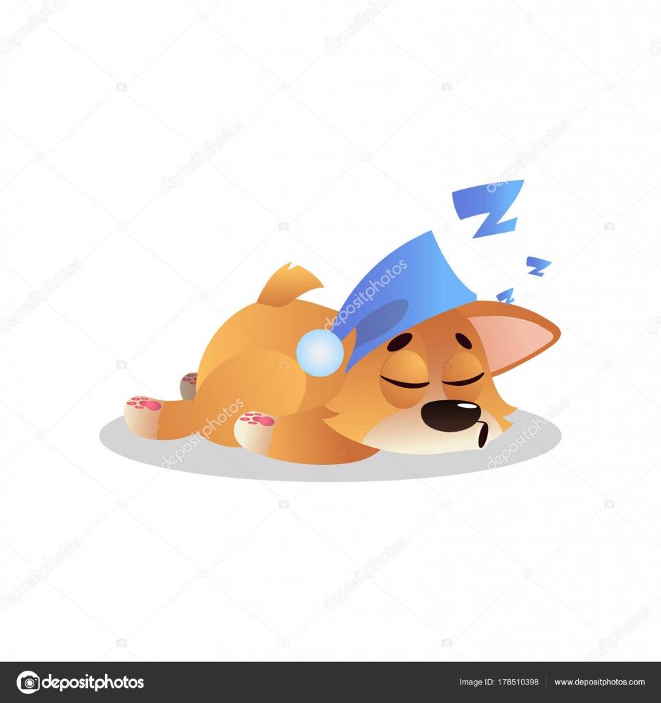 Doucement dormir corgi en bleu Bonnet avec pompon. Personnage de dessin  animé de chiot.
