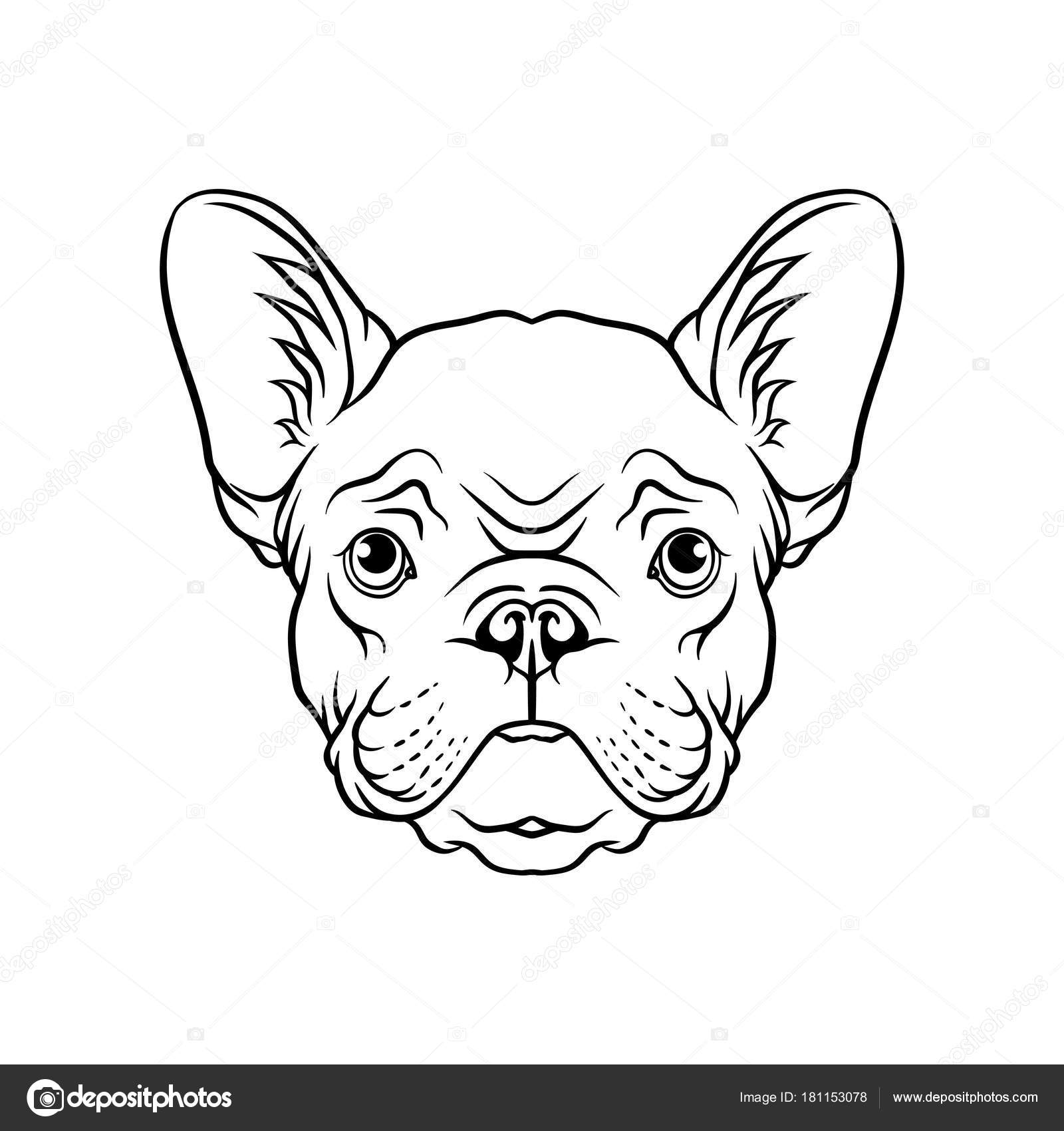Black And White Sketch Of Pug Dogs Head Face Of Pet Animal Hand