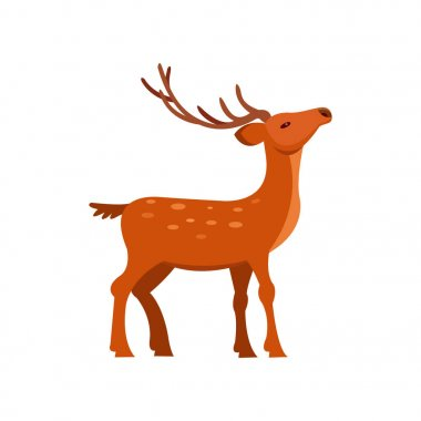 Graceful brown spotted deer with antlers, wild animal cartoon vector Illustration