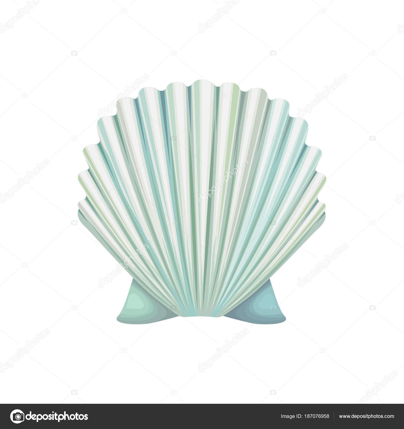 Icona Di Vettore Dettagliato Della Conchiglia Mollusco Di Mare