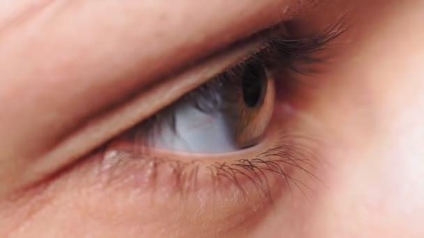 šedohnědé oko, zornička mladé dívky zblízka makro. selektivní zaměření, extrémní makro