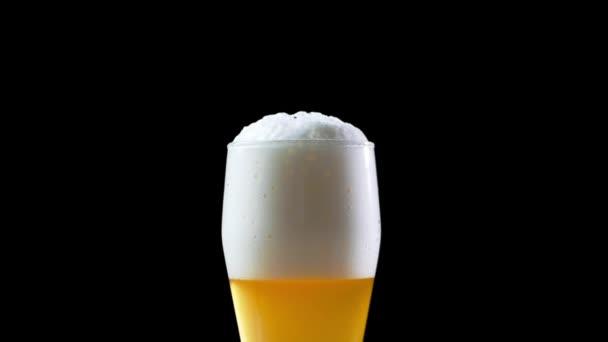 Pivo se nalije do sklenice na černém pozadí. Pivo se nalije do sklenice. Sklo s pivem pomalé přesouvání rámců Hd - bubliny a pěna rychle pohybovat v pivní sklenici. Použijete-li pivo ve skle. pivo
