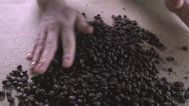 Coffee beans. Hands scattered coffee beans. Womens hands touch coffee beans.