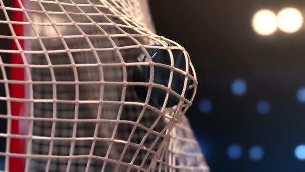 Hokejový puk letí do sítě