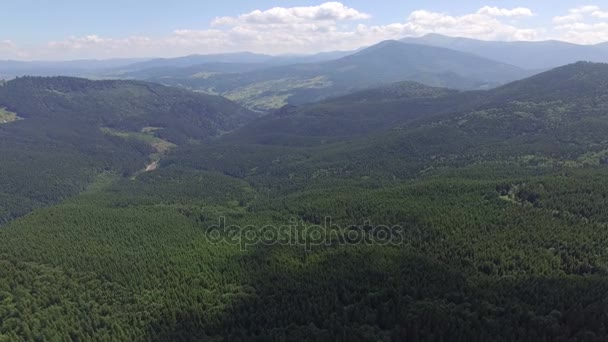 Beautiful view of the forests in the mountains. Aerial view