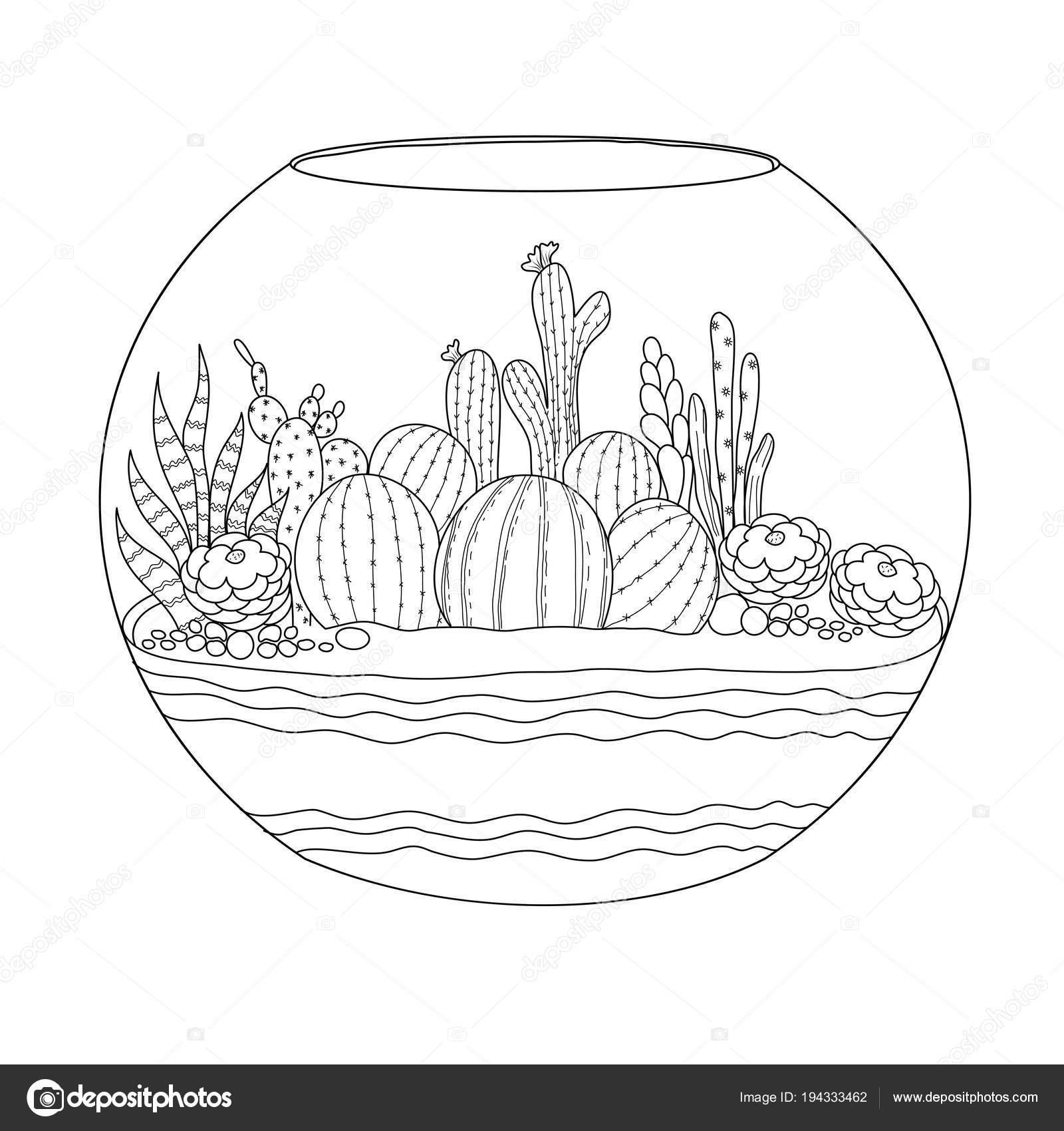 Cactus Para Adultos Niños Libro Para Colorear Handdrawn