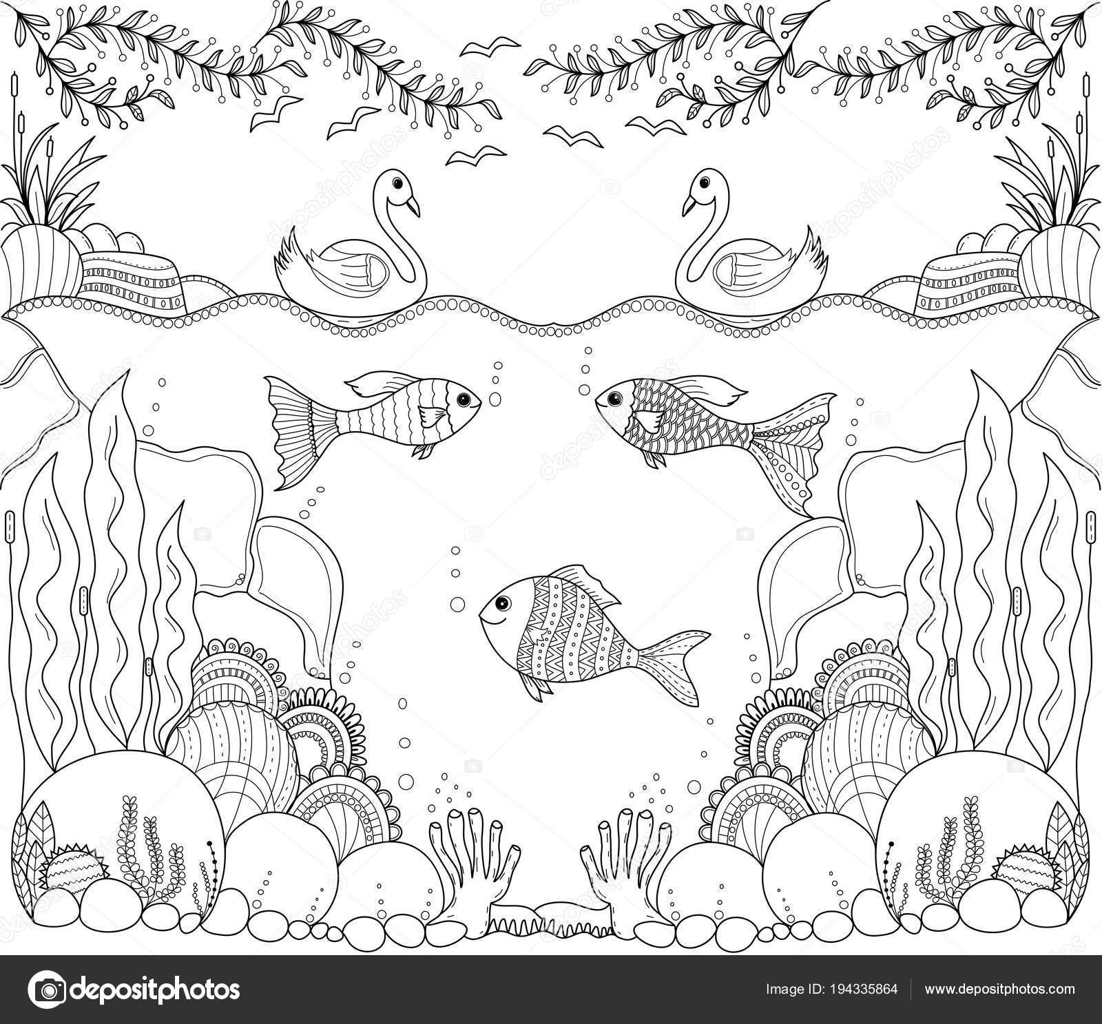 Tropische Vissen Zentangle Gestileerde Voor Volwassene Kleurplaat Fotoboekpagina Hand Drawn Vectorafbeelding Door C Noonizen9 Vectorstock 194335864