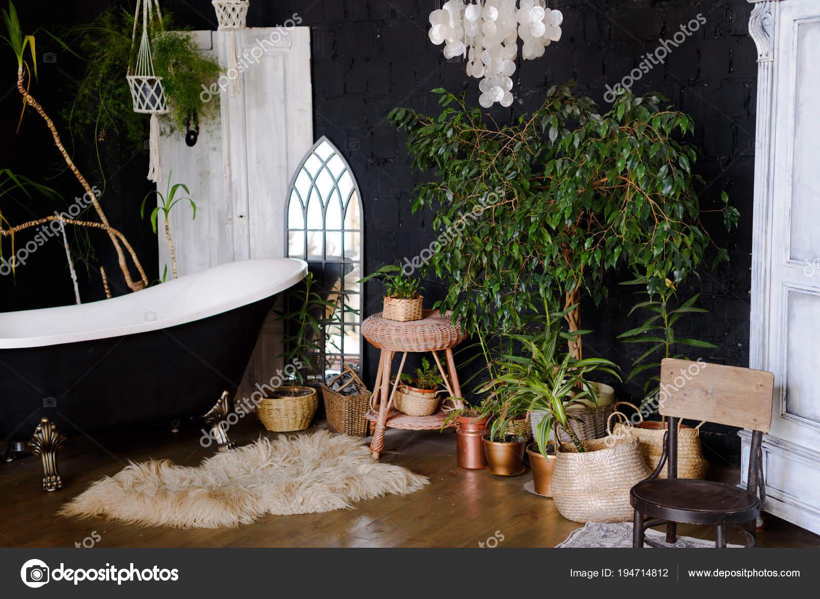 Interieur Salle Bain Style Tropical Photographie