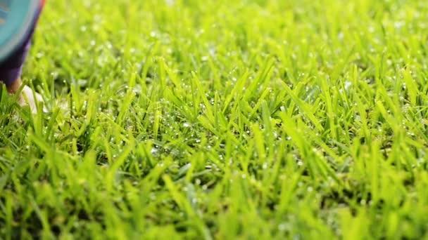 Handgehaltene Kamerafahrt der Füße einer Frau durch sonniges Gras mit Tautropfen in hochauflösendem Filmmaterial