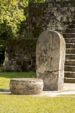 Complex Q Tikal Ruins Guatemala