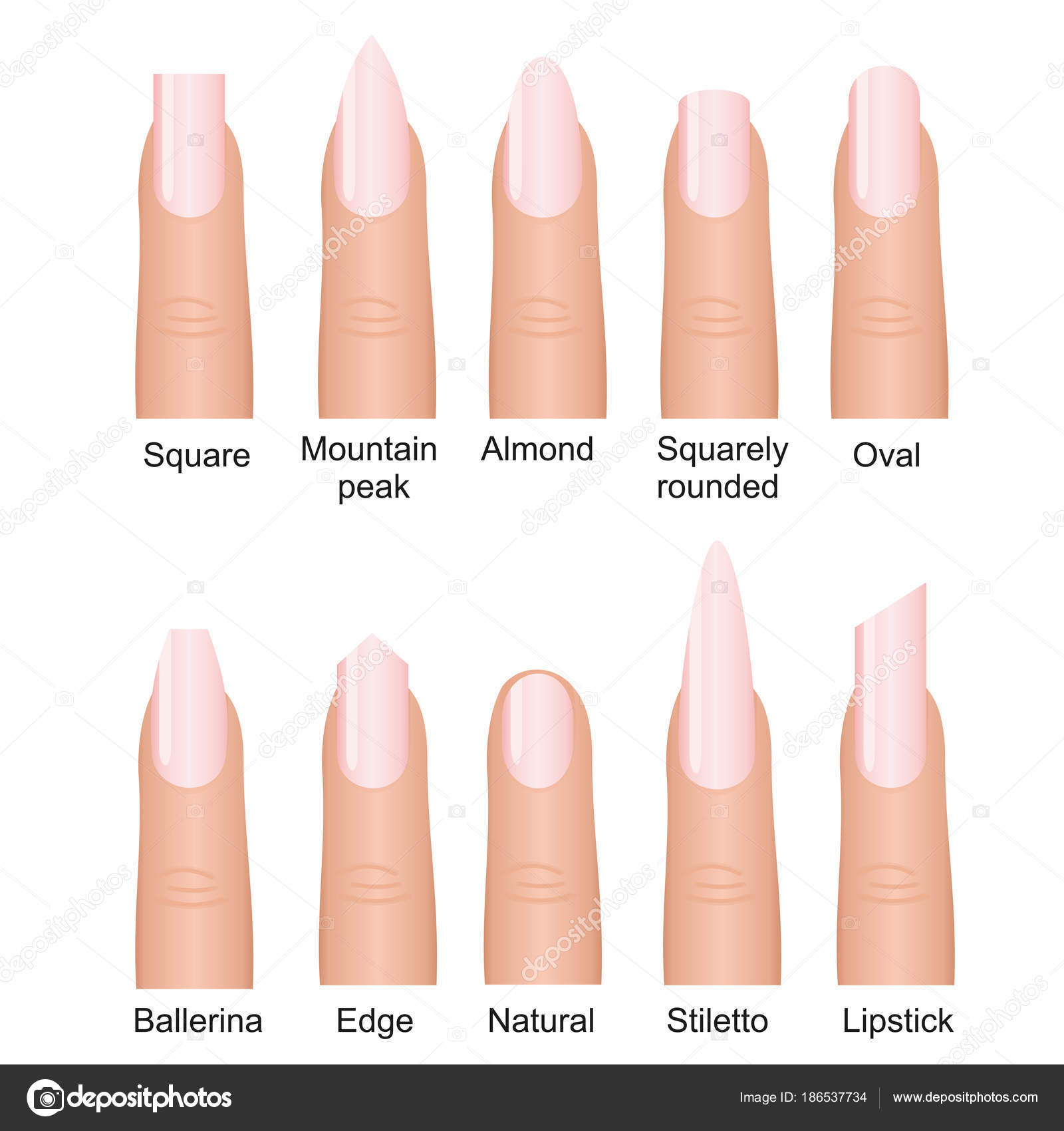 Vector Illustration Set Of Different Nails Shape Tipes Manicure Design On Fingers Isolated White