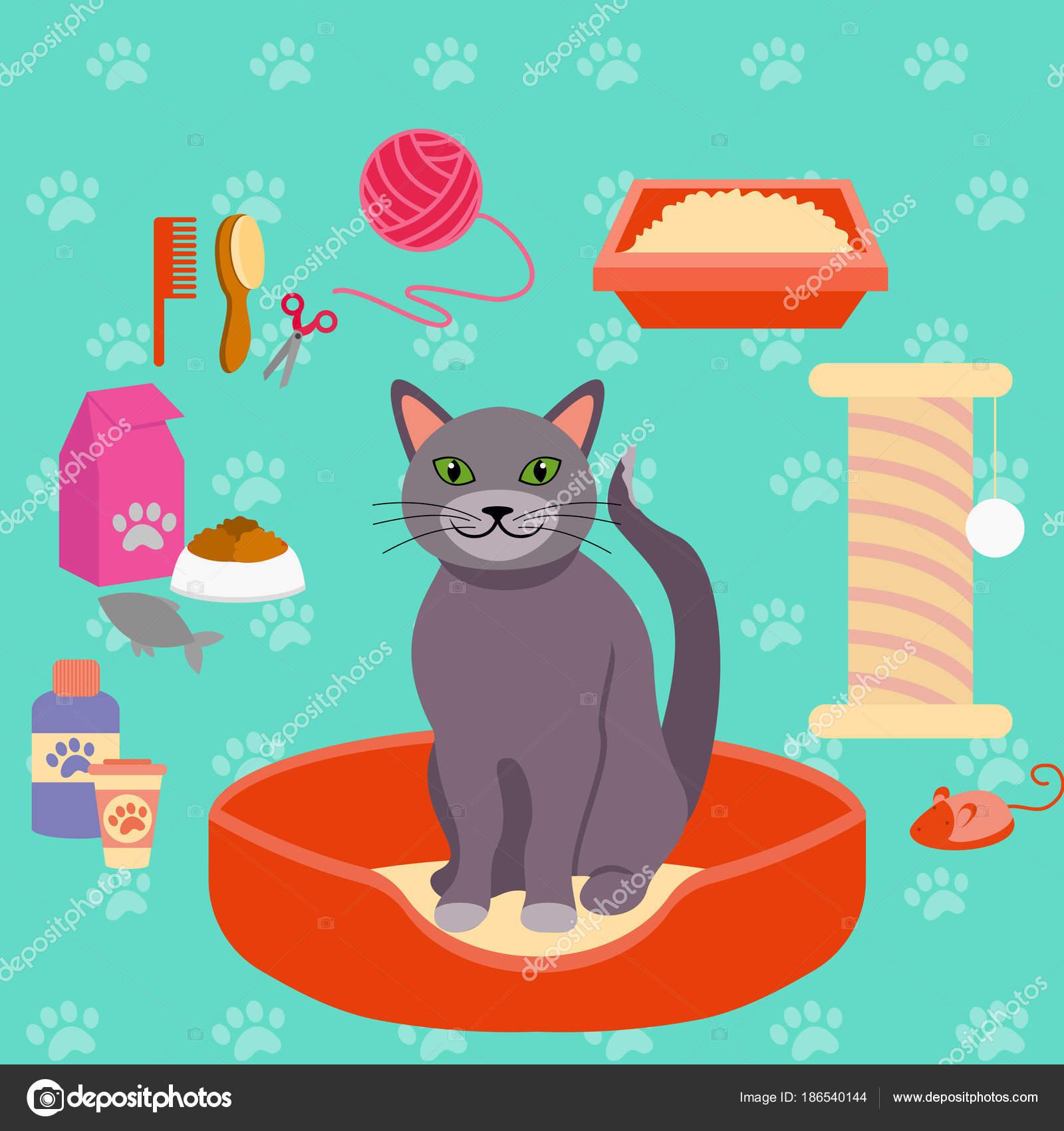 5dc7fc54defd Vector εικονογράφηση της γάτας με διαφορετικά αξεσουάρ Φροντίδας Pet για  τις γάτες. συλλογή εικόνων σε επίπεδη στυλ– εικονογράφηση αρχείου