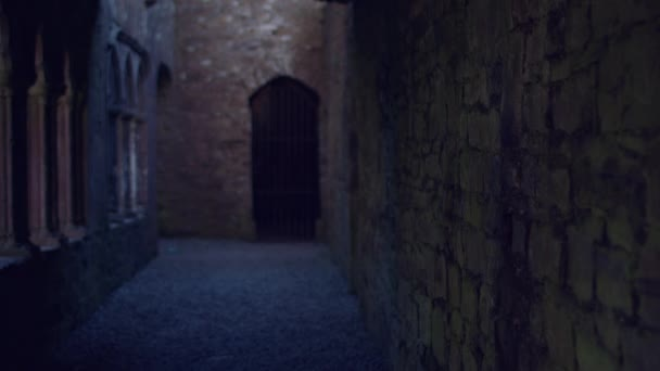 Ireland Abbey, Co Meath