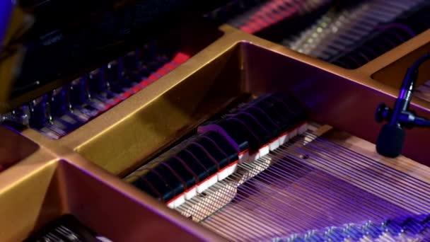 Vnitřek velkého klavíru, který se hraje pod divadelní osvětlení. Hraje se umělec, který se upíjí v G moll a ne autorskými písničkami.