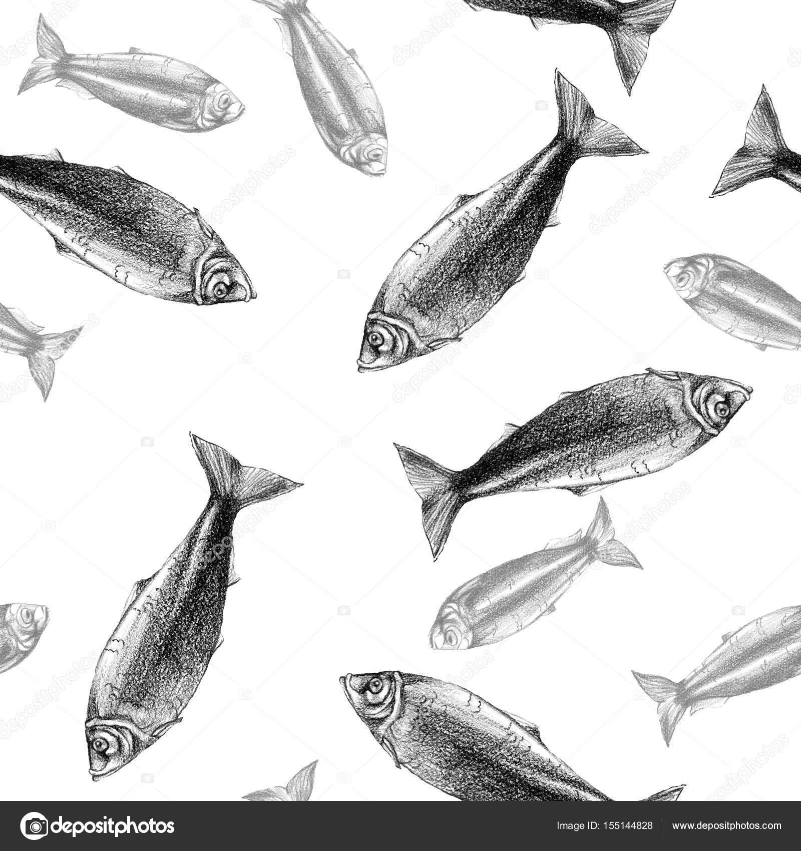 Nahtlose Muster Hintergrund mit Fisch zeichnen auf weißem ...