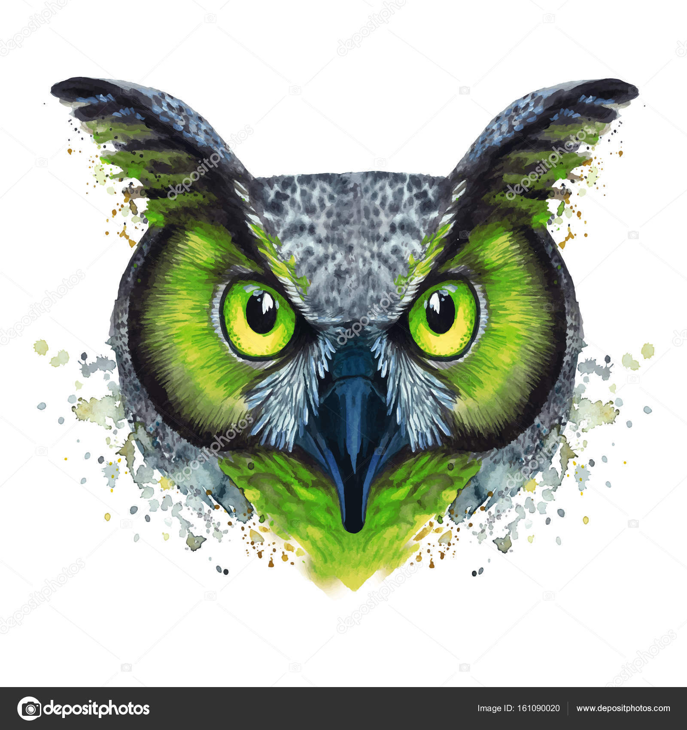 Un Dibujo De Un Búho Pintado Por Acuarelas Un Buho Con Ojos De Un