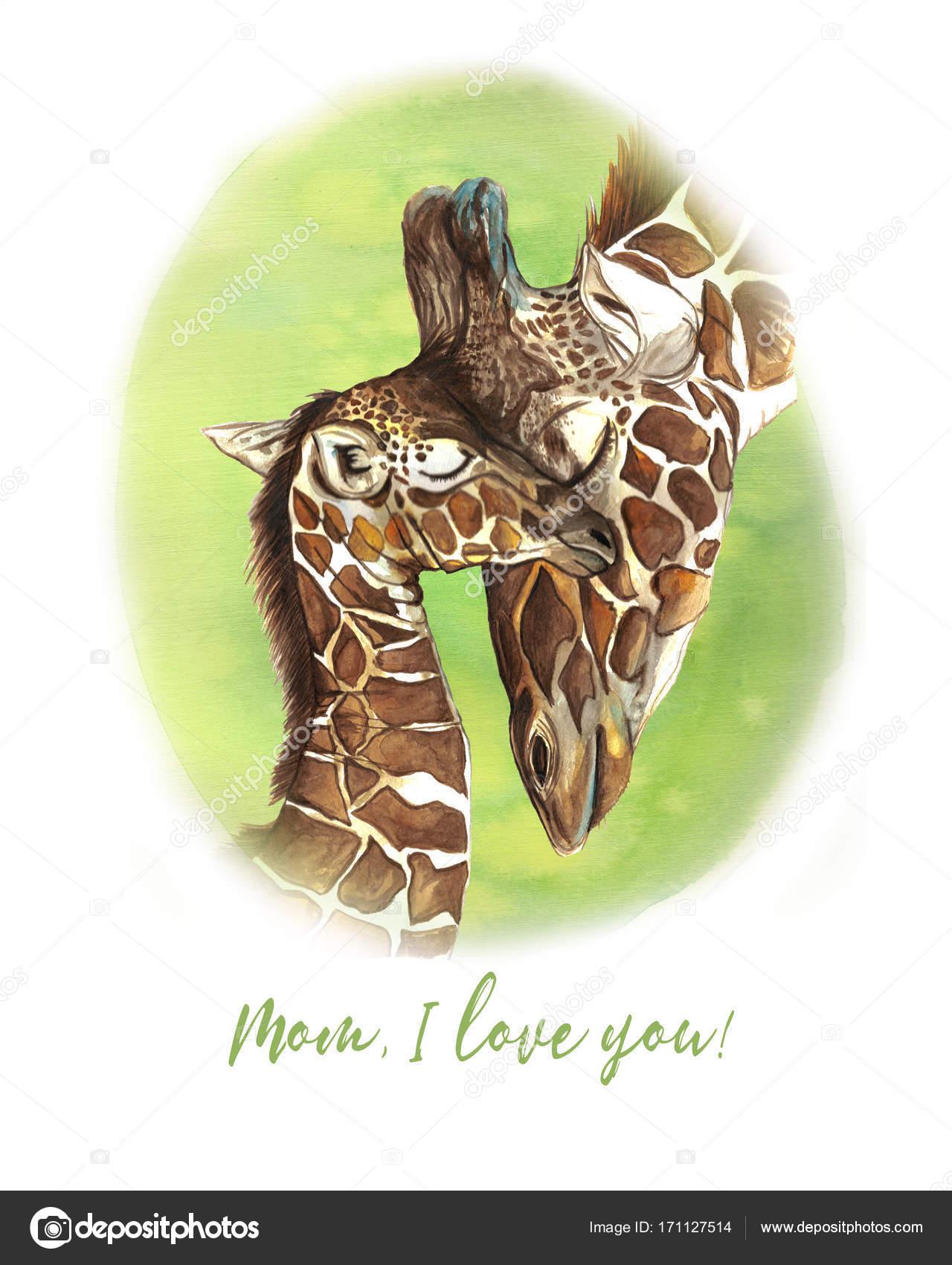 Patron Acuarela Animales Mamiferos Viven En Africa Jirafas Madre Y