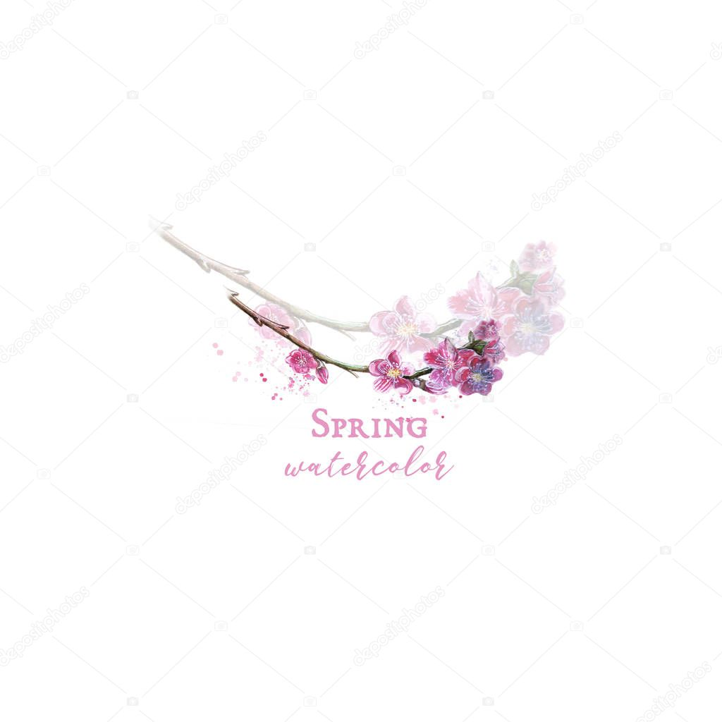 Watercolor logo from blooming sakura branch tender print and illustration for decor and design