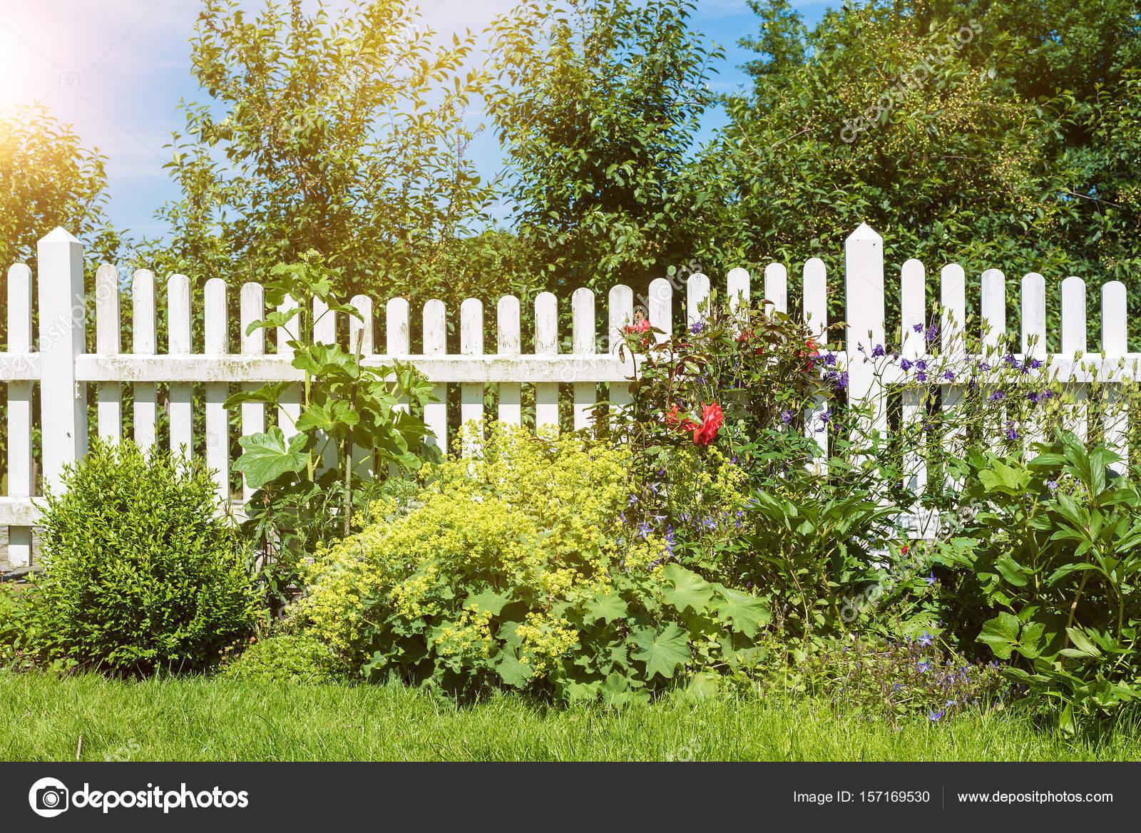 escena de jardn con flores y plantas al frente de la valla de