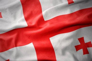 waving colorful flag of georgia.
