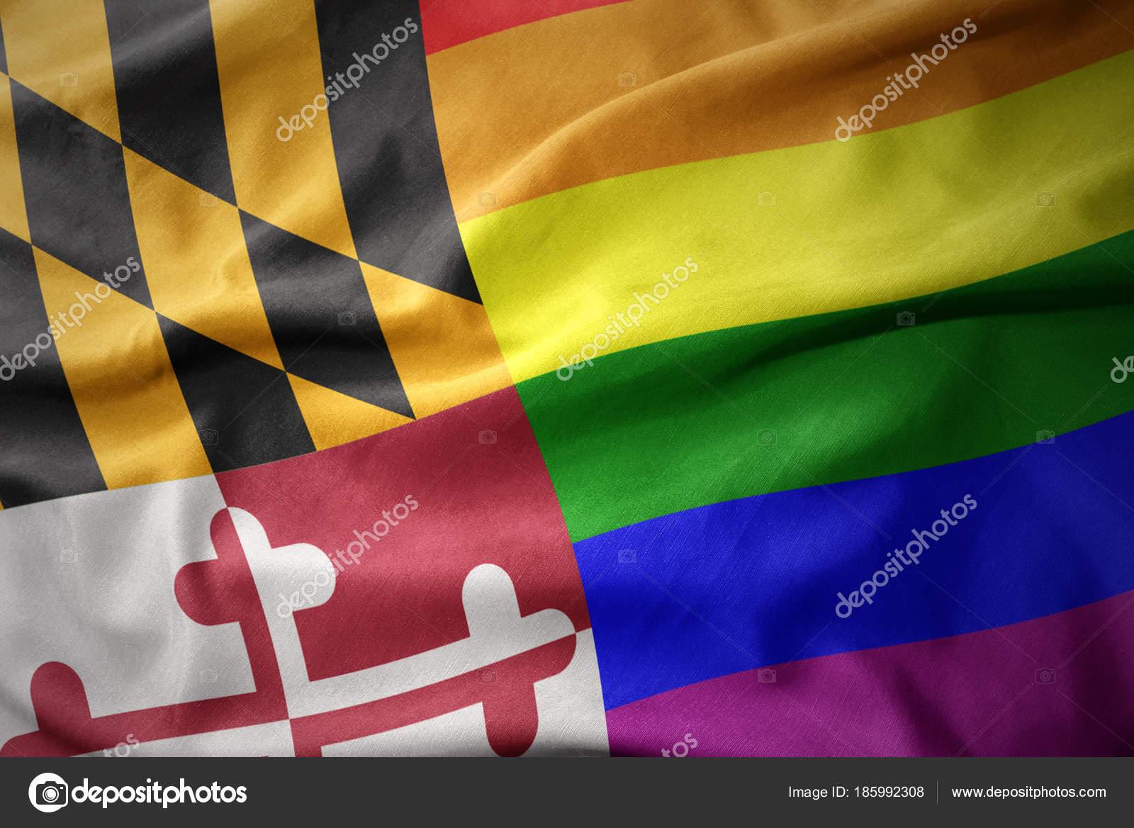 Transsexual lesbians