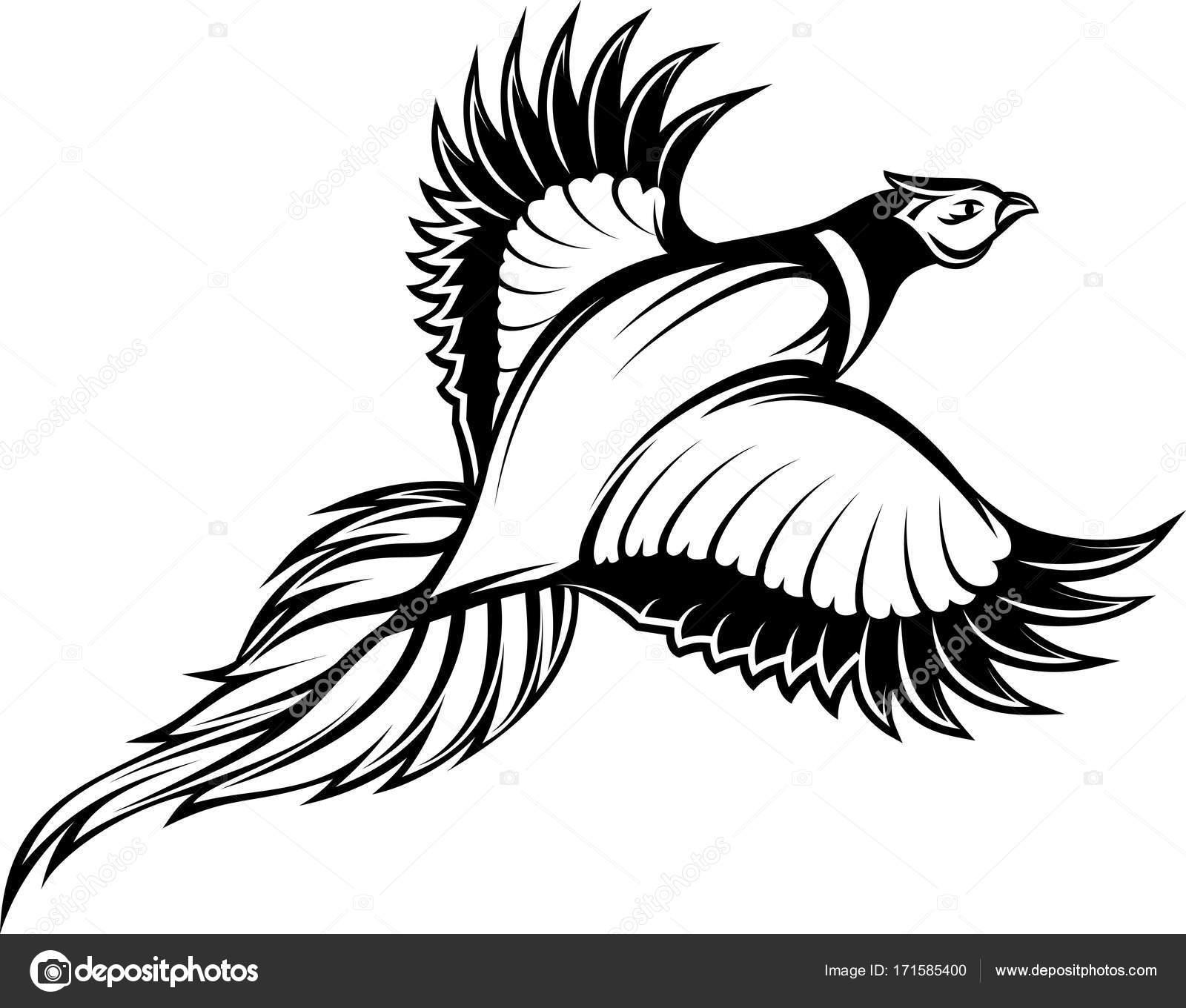 キジを飛んでスタイリッシュなモノクロのベクトル イラスト ストック
