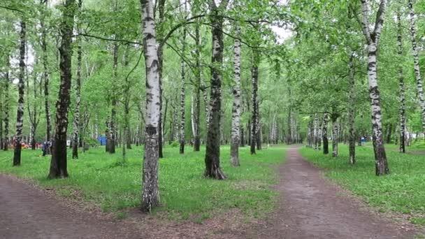 Jarní město březová Puškinově parku. Mnoho lidí jako je zde chůzi v jakémkoliv počasí.