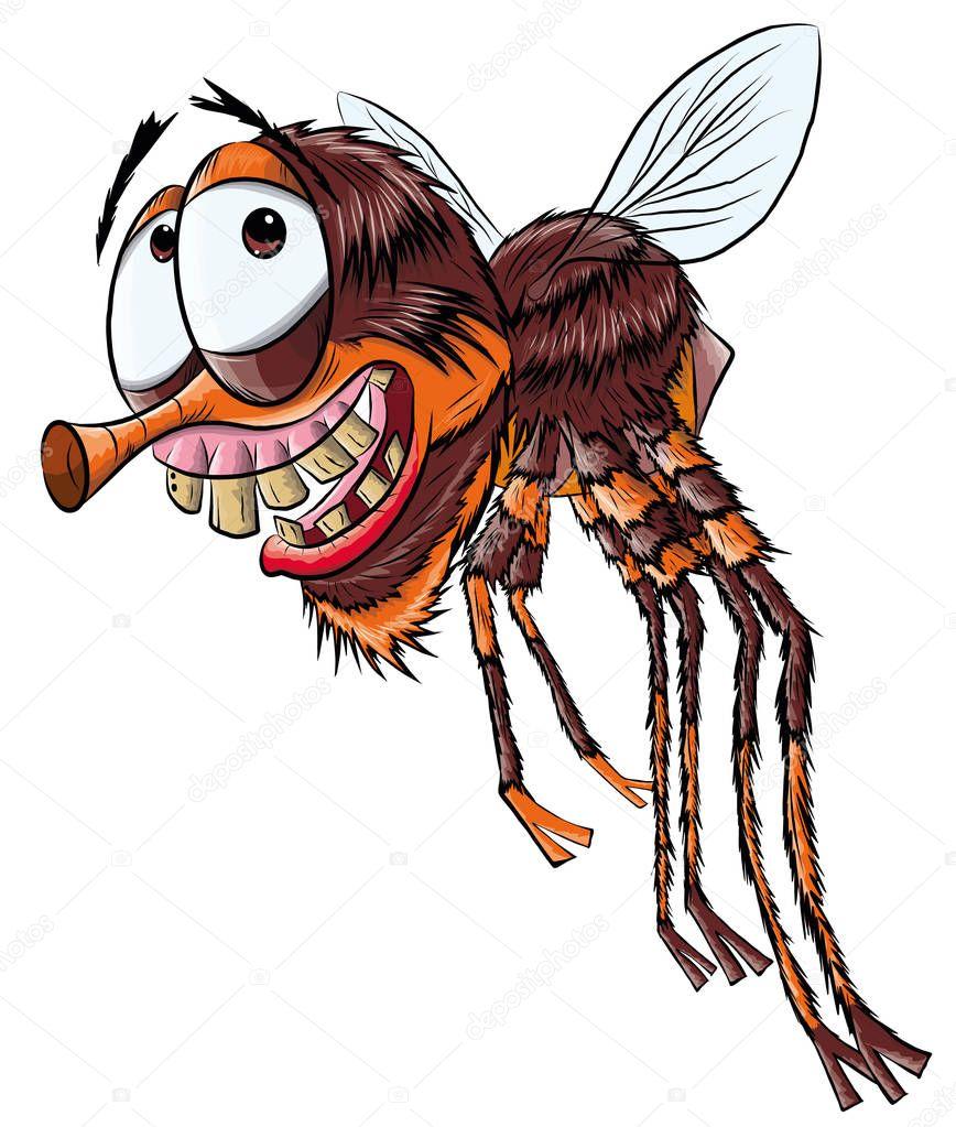 Картинка смешная муха