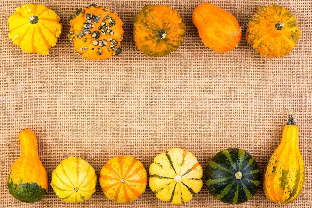 Podwójne Obramowanie Dynie Ozdobne Jesienią Zdjęcie