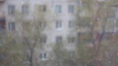The first snow is turned outside the window. Without focus