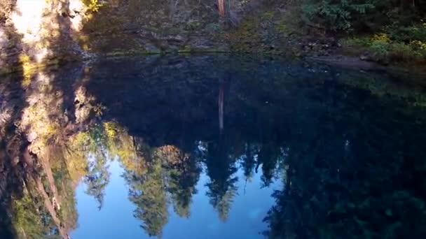 Tamolitch Blue Pool Oregon U2014 Stock Video