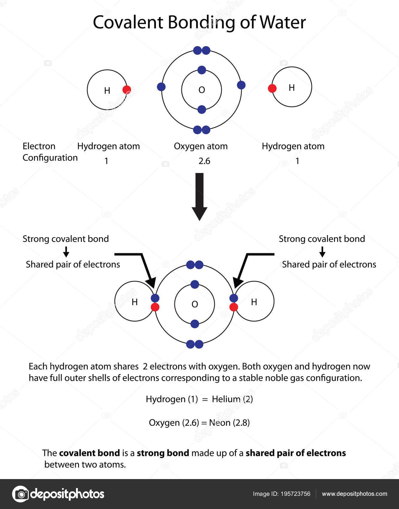 Diagramm Zur Kovalenten Bindung Im Wasser Mit Einem Voll Labor Zu Oxygen Atom Structure Diagram Stock Photo Veranschaulichen Stockvektor